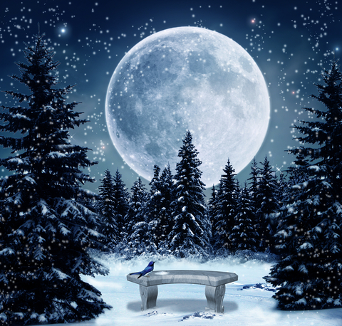SUPER SNOW MOON February 19, 2019 Fantasy-snow-moon
