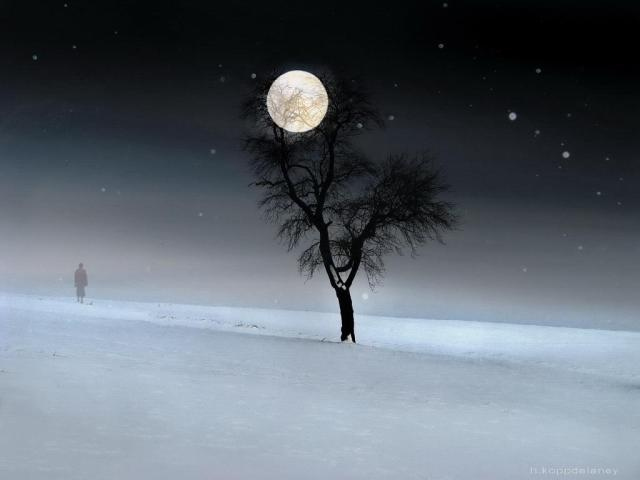 Walking on snow under full moon