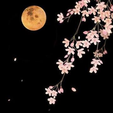 Flower Moon