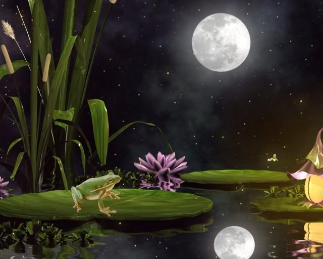 Frogs Return Moon