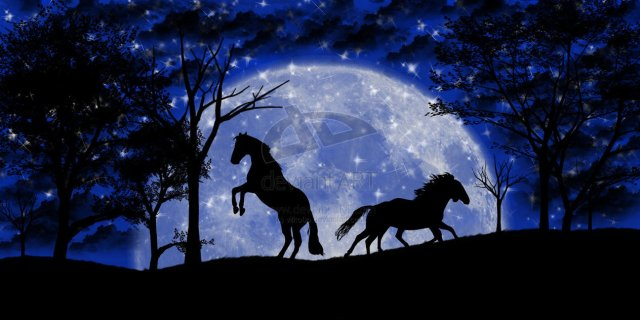 Horses in Moonlight by vilko0o