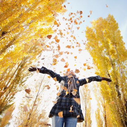 Autumn leaves (Getty Images)