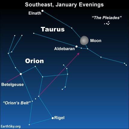 Orion Taurus Pleiades