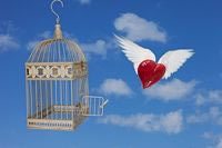 Freed Caged Heart