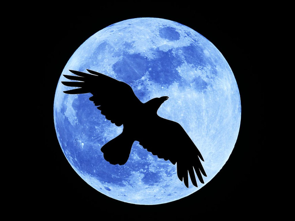 March's Full Crow Moon | earthmoonandstars