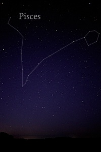 Pisces Constellation in night sky (Wikipedia)
