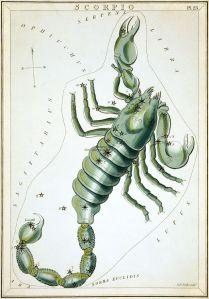 Scorpius (Urania's Mirror)
