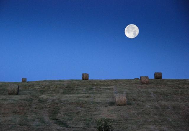 Full Hay Moon