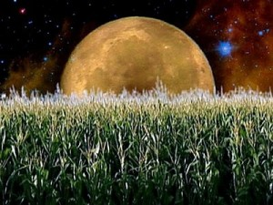 September's Full Harvest Moon (Science Projects For Kids)