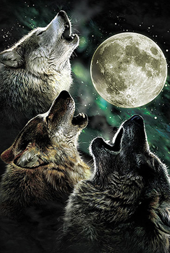 wolves-howling-at-moon